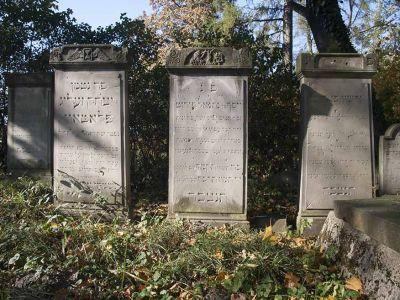 Najlepiej zachowany fragment cmentarza