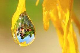 caluny-w-kropli-wody1