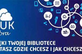 Ibuk_logo1